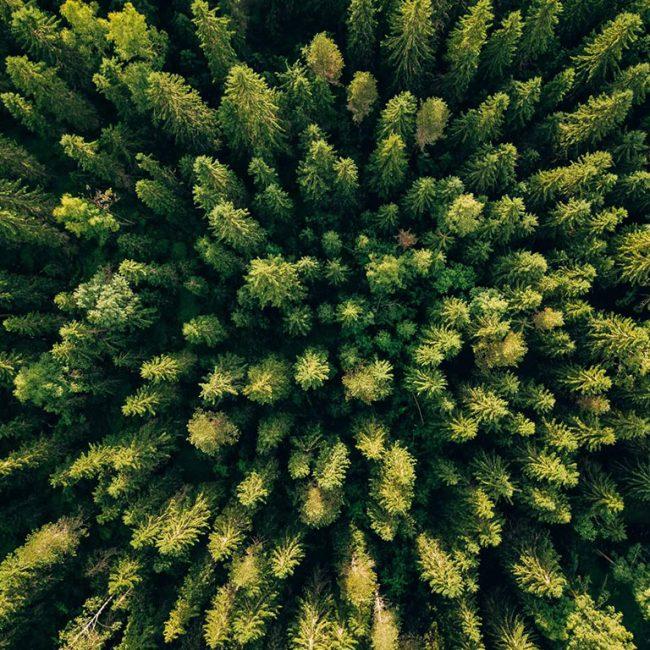 Grupa Berski - Twój ekologiczny dom